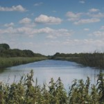 Yeovil_and_Somerset_Levels_Online_magazine_intro